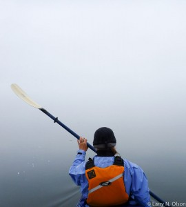 Kayaker paddles through thick sea fog at Skincuttle Inlet.